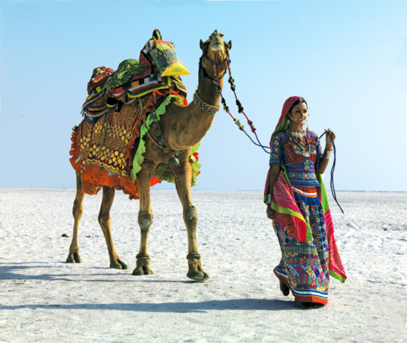 Native woman in traditional outfit with her adorned camel walking in the salt flats of the Great Rann of Kutch